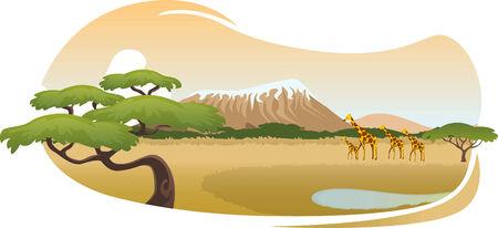 African savannah landscape vector cartoon Illustration