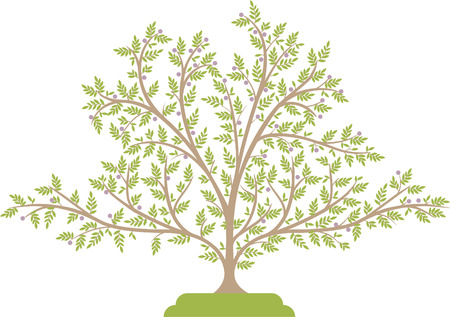 Vector illustration of a tree with green leaves.
