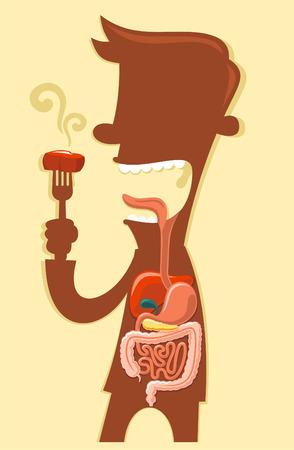 Bande dessinée système digestif humain x-ray d'un enfant. Banque d'images - 34030069