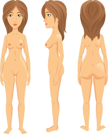 anatomy naked woman: Vector illustration of female figure. Front, back ,side views. Silhouettes