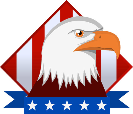 american silver eagle: American Eagle Emblem with flag backround vector illustration.