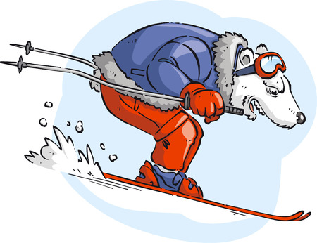 Polar bar skiing with blue jacket and red pants snow vector cartoon.