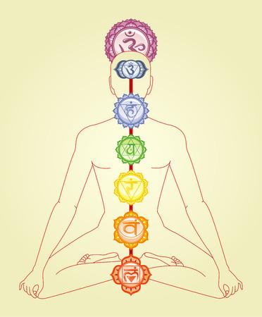 anahata: Meditazione Meditare Asana Postura Yoga con Om e sette chakra mandala Simbolo della colonna vertebrale illustrazione vettoriale ordine. Vettoriali
