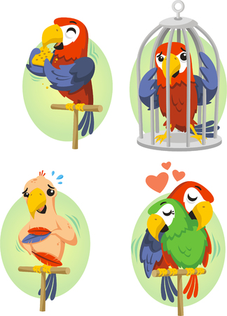 Cartoon parrot set 2 矢量图像