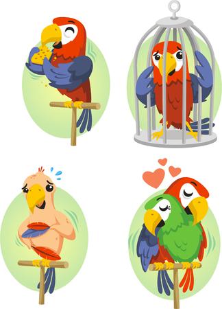 Cartoon parrot set 2 Illustration