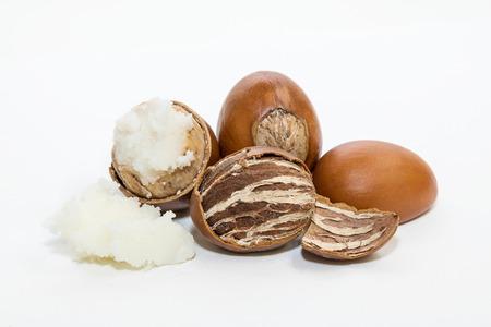 Shea nuts, with detail of its interior. Vitellaria paradoxa.