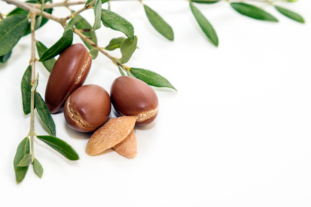 Argan noten Stockfoto - 85402099