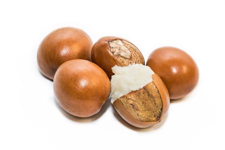 Shea nuts, Vitellaria paradoxa. Stockfoto