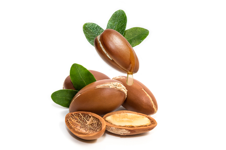 Argan oil. Argan nuts, with oil drop and leaves of its tree
