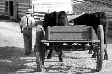 carreta madera: En la granja Foto de archivo