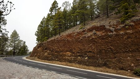 A smooth road on the slope of a cliff. Pine forest on a hill. 스톡 콘텐츠