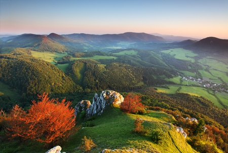 Summer panorama of the Carpathian Mountains