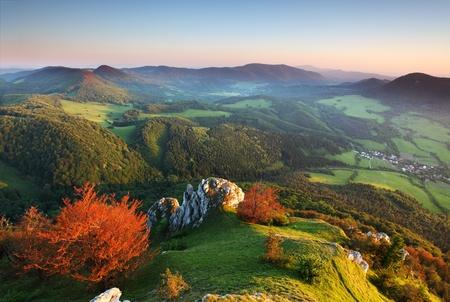 carpathian mountains: Summer panorama of the Carpathian Mountains