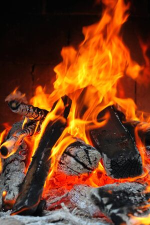 Fire in a fireplace Stock Photo - 16217995