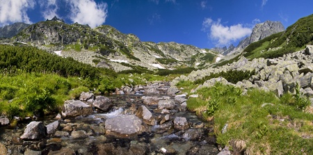 Mountain stream Stock Photo - 16594817