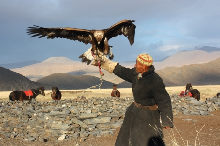horseman: MONGOLIA - 25 LUGLIO Il cavaliere mongolo anziano in abiti tradizionali con le aquile d'oro durante il festival del nome The Golden Eagle Festival Luglio 25, 2011, Mongolia - Deserto