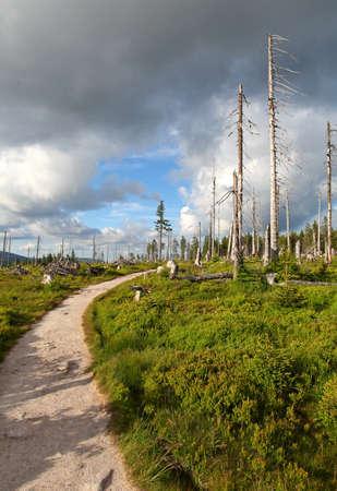 krkonose: Mountain path in Krkonose