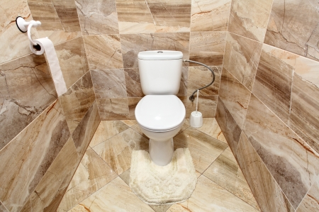 Luxus WC photo
