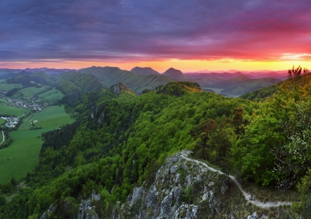 Zielony las górski o zachodzie słońca ze słońcem