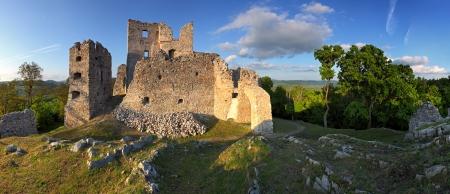 mediterranean forest: Ruin of Castle Hrusov