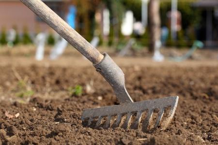 farming tools: Rake Stock Photo