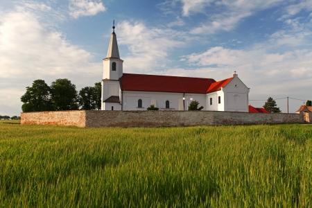 Church and wheat field in Slovakia photo