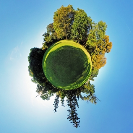 Forest Globe - Little planet at summer photo