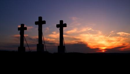 Tree crosses on sunset