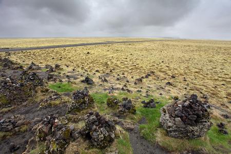 Icelandic moss covers volcanic rock photo