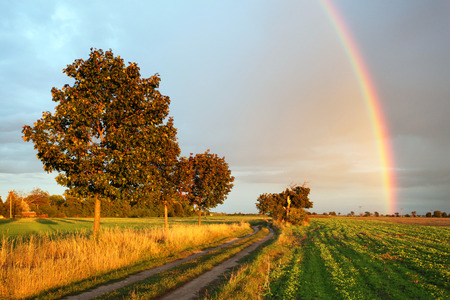 Rainbow over field road at sunset light photo