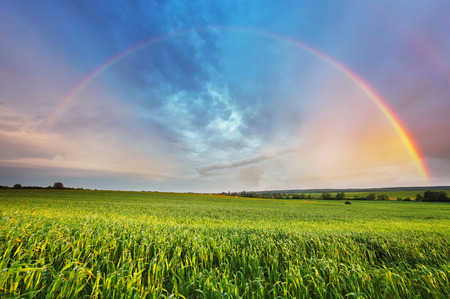 Rainbow over spring field photo
