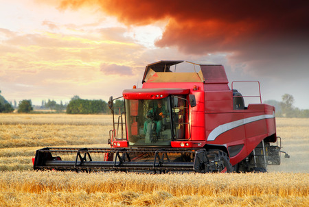 Wheat field with Harvester machine at sunset photo