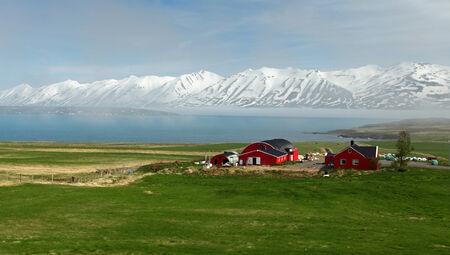 fjords: Iceland summer landscape. Fjord, house, mountains