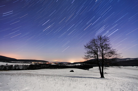 time lapse: Tree at night - winter with stars Stock Photo