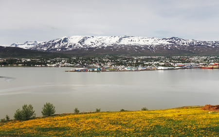 dandelion snow: Akureyri city - Iceland Stock Photo