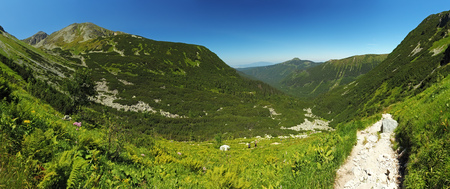 scrub grass: Mountain panorama