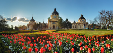 Budapest - spring panorama with flower, Szechenyi Spa, Hungary