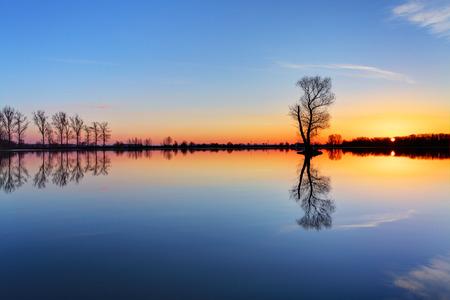 Tree and sun on lake sunrise 스톡 콘텐츠