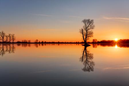 lake sunset: Silhouette tree at sunset in lake Stock Photo
