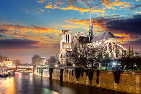 paris at night: Island Cite with cathedral Notre Dame de Paris Stock Photo
