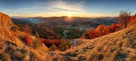 forest trees: Autumn rural forestl landscape at sunset Stock Photo