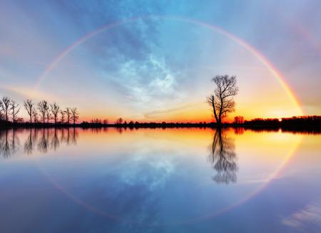 Drzewa i słońce nad jeziorem wschód słońca