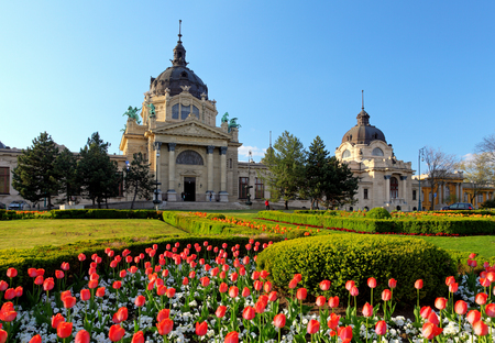 Szechenyi Spa with flower - Budapest, Hungary