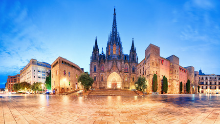 history architecture: Cathedral of Barcelona, Gothic city at night, panorama.