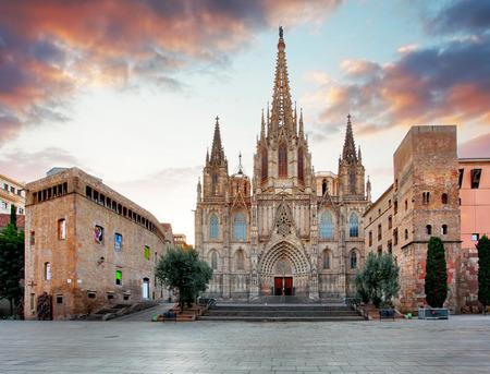 monasteri: Cattedrale di Barcellona. Spagna.