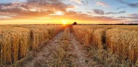 田園風景、スロバキア地方