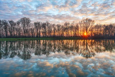 湖の夕日の森