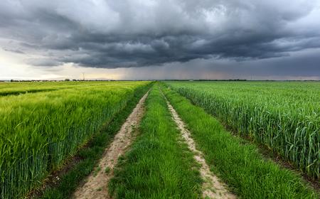 フィールドと道路上の嵐雲