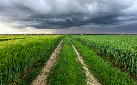 Storm clouds over field and road