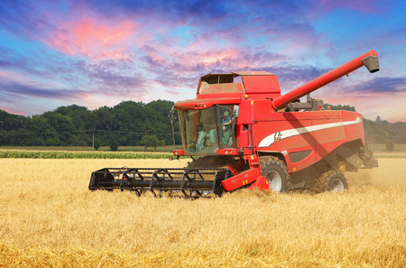 harvester: Combine harvester in Wheat field.